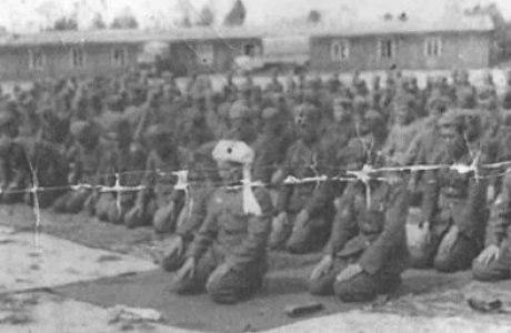 Түркістан легионы. Мұстафа Шоқай. Түркішілдік