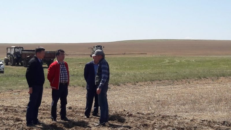 Қарағанды облысында көктемгі егіс жұмыстары кесте бойынша жүргізілуде