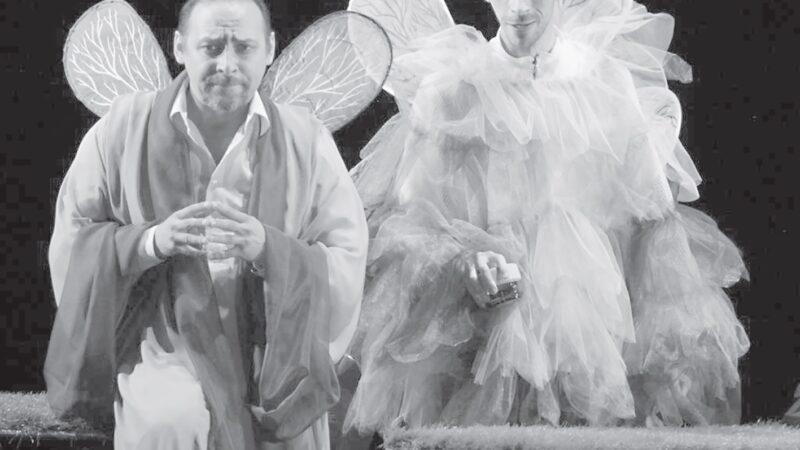 Қойылым құпиясы – эльтер